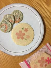坂角の春さくら煎餅と、うっかりもあればしっかりもある教室の日々 - 手染めと糸のワークショップ