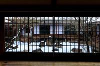 建仁寺の雪景色 - 花景色-K.W.C. PhotoBlog