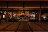 京都の紅葉2016 建仁寺ライトアップ - 花景色-K.W.C. PhotoBlog