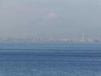 Mt.Fuji - aya's photo