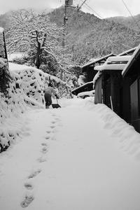 大原雪景色其の八・里寸景 - デジタルな鍛冶屋の写真歩記