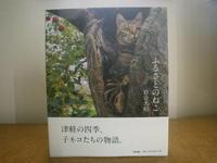 津軽の猫2/25 - つくしんぼ日記 ~徒然編~