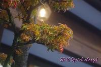 2016旅行月の想い出日光編⑨ - Natural charge
