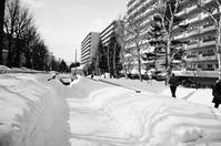 雪のサイクリングロードと閻連科の日照り小説「年月日」 - 照片画廊