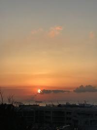 魚座の新月。日蝕の今日は、 - プランテプラネットのブログ。ここからもうちょっと