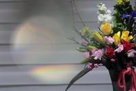 ブログ開設11周年☆お雛様 - お花畑で微笑んで**