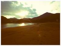 イソヒヨドリ - 今日も渚で日が暮れて