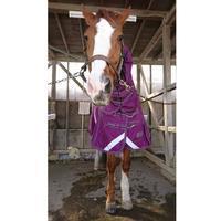 252鞍目初メンバー - 美味しい時間と馬と犬