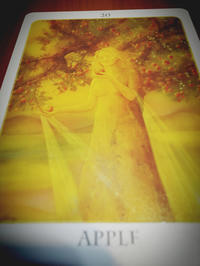 ♪今日のメッセージ - *:.。..。.:+・゚自然からの贈り物 に感謝のつれづれ日記*?:.。..。.:+・゚・