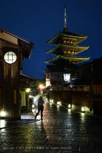 京都の春、はじまりました。 - あ お そ ら 写 真 社