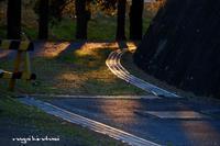 日暮れ時 - 長い木の橋