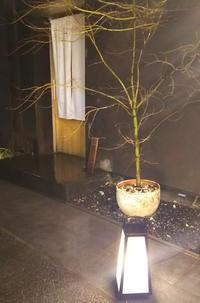 祝10周年♪「鳥しき」@目黒 - ♪♪♪yuricoz cafe♪♪♪
