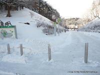 冬の盛岡ヒトコブラクダさん訪問 - こらくふぁーむ