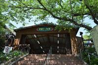 太平記を歩く。その29「摩耶山城跡」神戸市北区 - 坂の上のサインボード