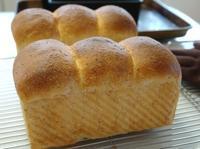 ずんぐりむっくり山食&お弁当 - ~あこパン日記~さあパンを焼きましょう