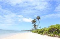ハワイの「都市伝説」 - 転々娘の「世界中を旅するぞ~!」
