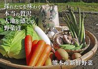 熊本の最旬「美味かもん」をご紹介vol.18(清流の里の『原木しいたけ』、無農薬栽培『ダイコン』) - FLCパートナーズストア
