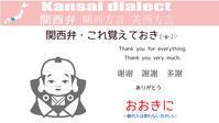YouTubeで「関西弁、これ覚えておき」をはじめました(•ө•)♡ - ねぇ知ってたぁ?