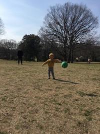 1歳8ヶ月8日。砧公園へ - こんな私のはじめての妊娠・出産…そして子育て真っ最中