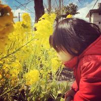 3/14  女子の力 - yogaram