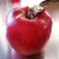 真っ赤なりんごのように - 歌う寺嫁 さちこの つれづれ精進茶和日記