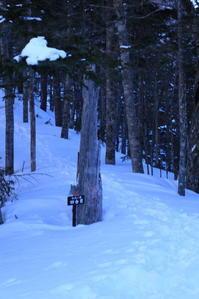 久しぶりに「週末は山にいます」後半170311-12 仙丈ケ岳 - 週末は山にいます