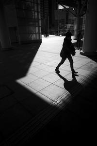 光りは春の#01 - Yoshi-A の写真の楽しみ