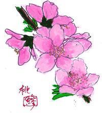 雛祭りは桃の節句/清明の頃 - 鯵庵の京都事情