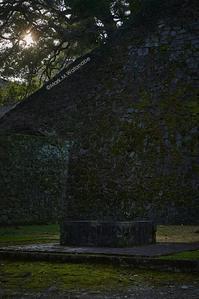 熊本城の石垣 - Mark.M.Watanabeの熊本撮影紀行