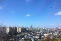 Anniversary - むーちゃんパパのブログ 3