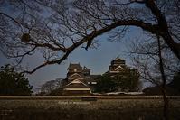 熊本城は今 - Mark.M.Watanabeの熊本撮影紀行