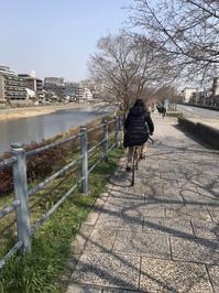 大政奉還150年旅*9時間京都サイクリング - おはけねこ 外国探訪