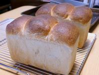 しなやか山食&新しい助っ人 - ~あこパン日記~さあパンを焼きましょう