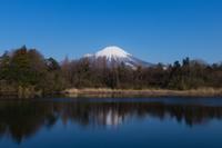 冠雪の大山撮影記 - 写真ブログ「四季の詩」