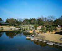 日本庭園 - BobのCamera