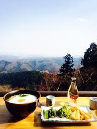 3月の高尾山 - うつわ愛好家 ふみの のブログ