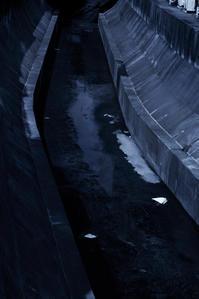 渋谷川 - フォトサークル      「森羅の会」