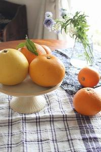 春の柑橘 - 暮らしを紡ぐ