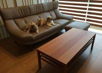 カリモク家具の納品実例 〜ソファZU46、CT73、ベンチ、他〜 - CLIA クリア家具合同会社