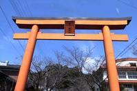 【蒲生八幡神社】日本一の巨樹・蒲生の大楠 - ヤスコヴィッチのぽれぽれBLOG