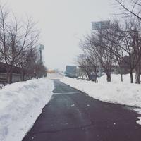雪のスタルヒン球場 - RIVER LEATHER