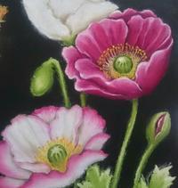 春のお花【ポピー】 - 色彩チョークアート*ふわり ~fuwari*chalkart~