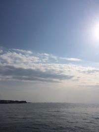 始まりマス!「桜吹雪」舞い散る中での 極上フライフィッシング - フライフィッシング情報byクレオール -1