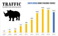 2016年のサイの密猟数についての現状分析 - 親愛なる犀たちへ