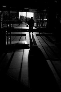 逆光は七難隠す - Yoshi-A の写真の楽しみ