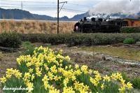 大井川の春はまだ遠し - 夕暮れと蒸気をおいかけて・・・