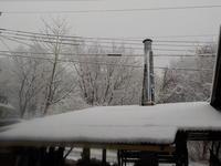 翌日は雪 - 冬青窯八ヶ岳便り