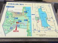 木場潟清掃活動 ( 3月26日 ) - まめまめのバス釣り奮闘記