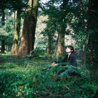 forest - photomo