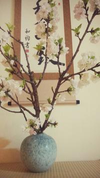 今月の花・3月の終わり - 紙鳶流 おなか想いのたいたいレシピ